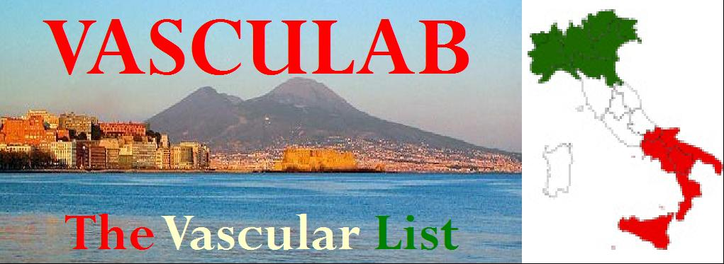 Vasculab - The Vascular List!